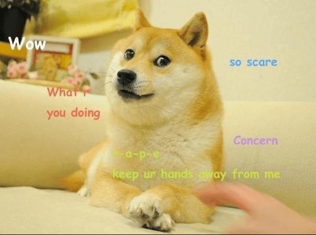 The Original Doge meme